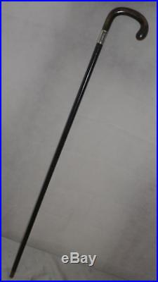 Antique Ebonised Walking Stick With Hallmarked Silver Collar-Bovine Horn Handle