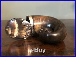 Antique Scottish Rams Horn Snuff Mull Box with Silver Design On Lid 19th Century
