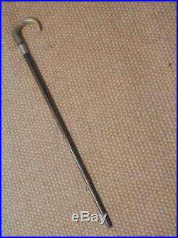 Antique Walking Stick With H/m Silver Collar London 1923 & Bovine Horn Handle