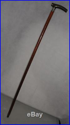 Antique hallmarked silver malacca walking/dress cane with bovine horn handle