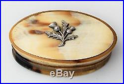 Beautiful Georgian Pocket Oval Scottish Horn Snuff Box With Solid Silver Thistle