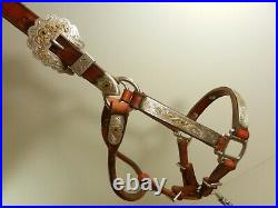 Broken Horn Show Halter, Leather silver Green Rhinestones With Lead