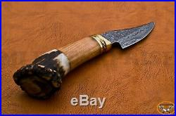 Handmade Damascus Steel Hunting Knife With Stag Antler Horn Wood Brass Handle