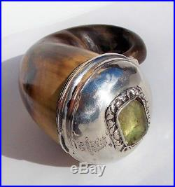 SOLID GEORGIAN SOLID SILVER WITH GLASS STONE SCOTTISH SNUFF MULL HORN c1800